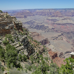 Zomer in de Grand Canyon