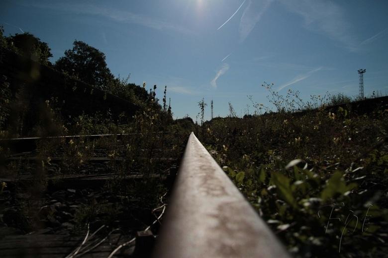rail - spoor