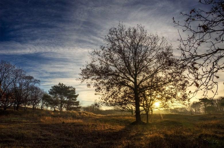 Sunrise - Herfstig plaatje van de zonsopkomst, genomen in het AWD.