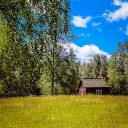 Zweedse zomer