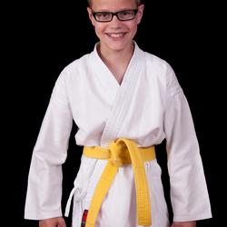 Robin: karate gele band