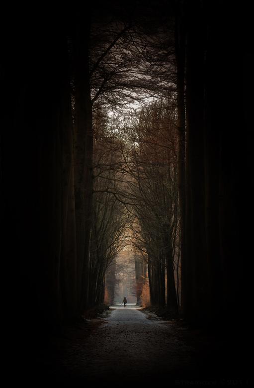 Walk the lane... - Vanmorgen gefotografeerd. <br />