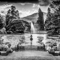 Wicklow Court Gardens Dublin