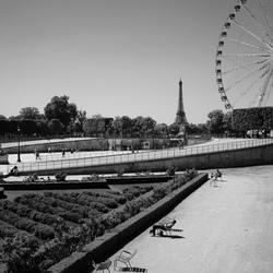 Tonal Paris.
