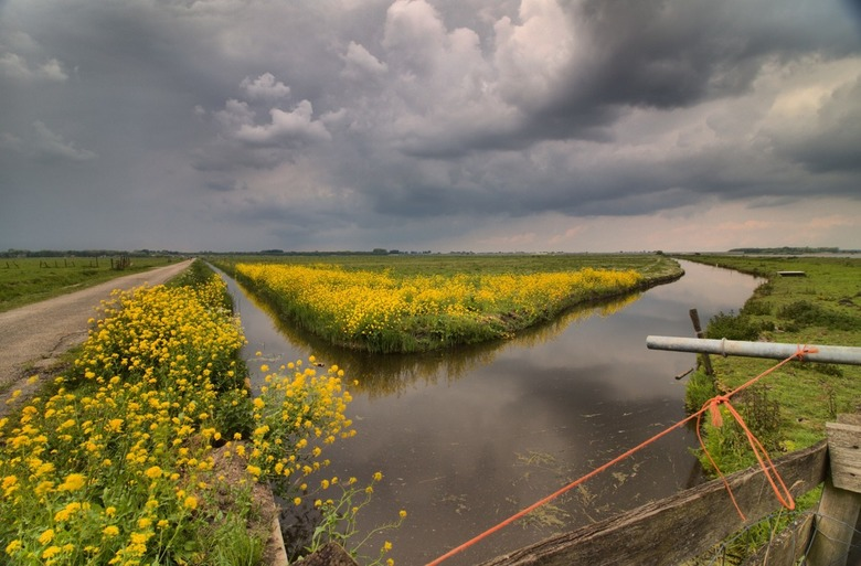 HDR Polder Eemnes_Bloemenweide - Een foto in de polder van eemnes, net voor een bui waarbij er een prachtige wolkenpartij ontstond.