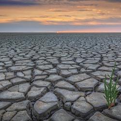 Aanhoudende droogte