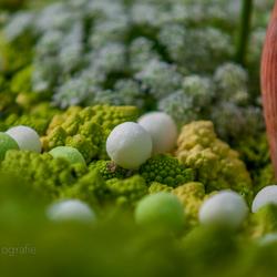 Broccoli in kunstvorm