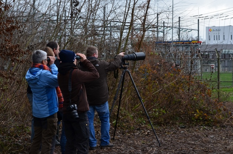 Genieten  - Veel volk , <br /> Wij waren gelukkig vroeg ,tegen rond de middag en er kwamen steeds meer fotografen aan ( gem 30 man ).Allemaal in de b