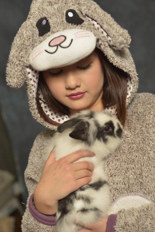 Pet Rabbit -