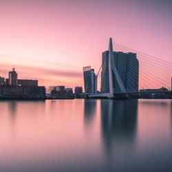 Pink morning in Rotterdam.