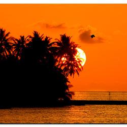 Magic Maldives