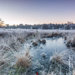 Eerste Winter