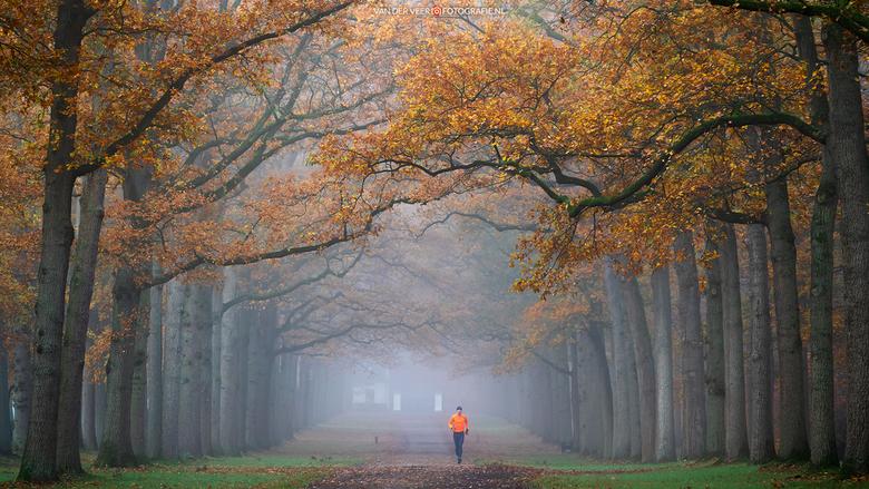 """Running in Orange - Running in Orange<br /> Paleispark Het Loo, Koningslaan.<br /> <br /> Groeten Frederik<br /> Volg <a href=""""http://www.vanderve"""