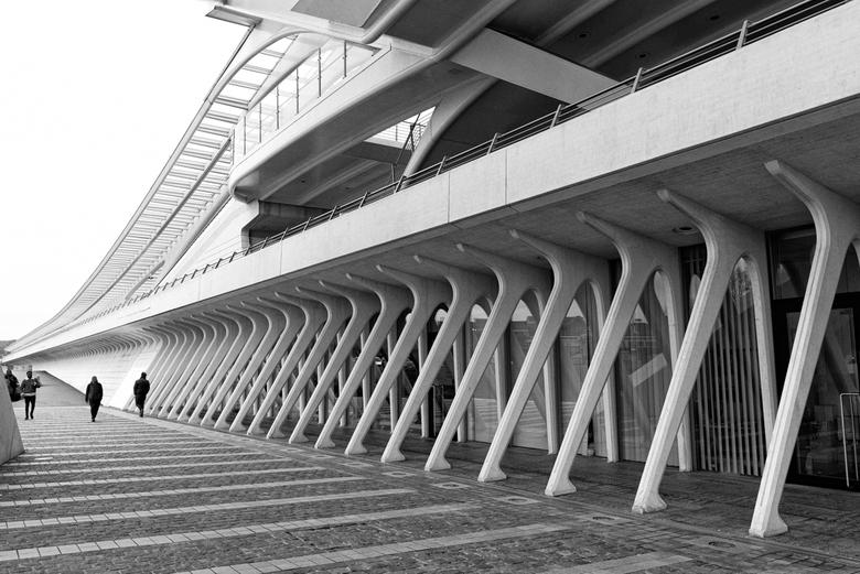 Luik_Guillemins Hibje - Station Luik, architect Calatrava