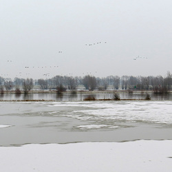 De IJssel in de winter