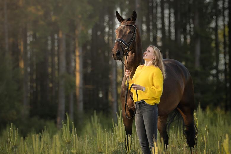 Meisje met haar paard - Prachtig zacht avondlicht