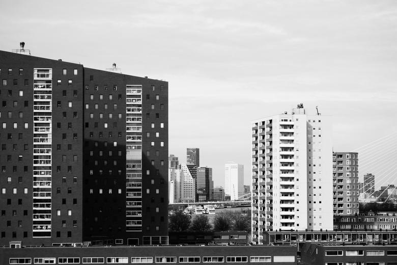 Stadsgezicht - Rotterdam