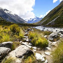 Nieuw - Zeeland 037