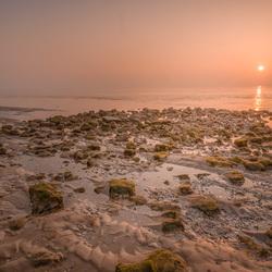 Texel Dawn