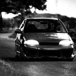 Drive me like an animal!