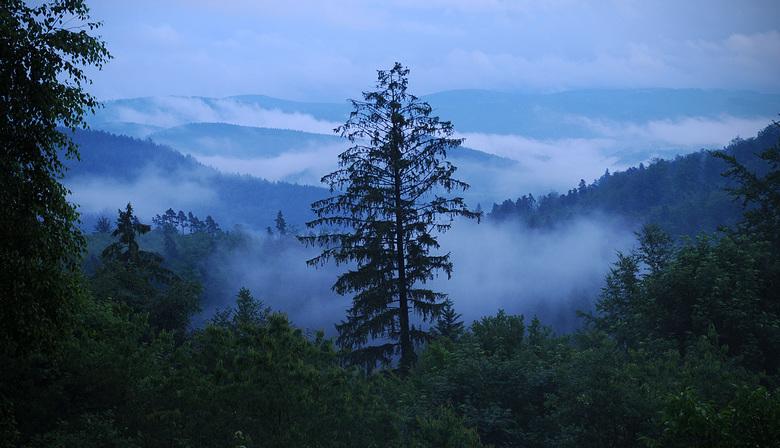 Mist in de heuvels van de noordelijke Vogezen