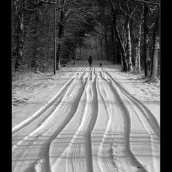 Sporen in de sneeuw2