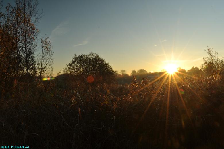 Een zonsopkomst in Westzaan - Een zonsopkomst in het natuurgebiedje Het Guisveld in Westzaan.