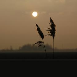 De laatste zonnestralen van het jaar
