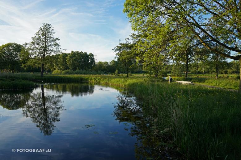 "Fotograaf4U - Hitland Bos Capelle ad IJssel - Fotograaf4U - Hitland Bos Capelle aan den IJssel (tijdens het &#039;blauwe uurtje&#039<img  src=""/images"