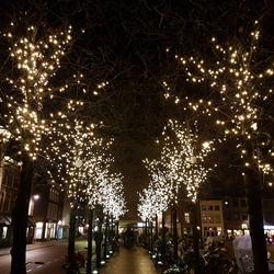 Leiden lichten