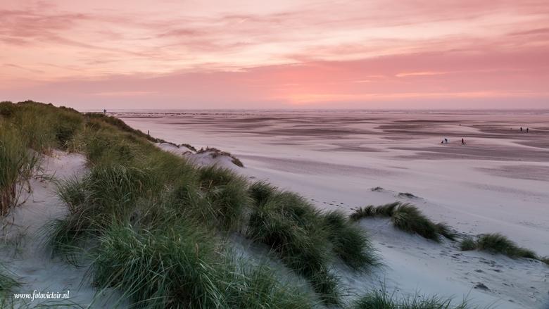 Texel  - Bij bedankt voor de reacties op mijn vorige uploads. Nu een kleine serie van ons bezoekje aan Texel, de hele serie is te zien op mijn site <a