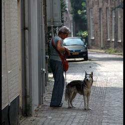 Zoomdag Zwolle