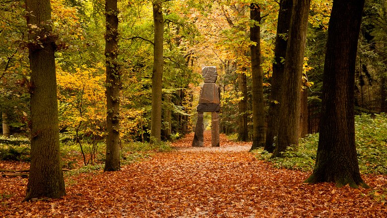 De Reus - Kunst in de Oude Warande in Tilburg met o.a. dit gigantische beeld.<br /> Ik vind het beeld uitstekend passen in dit herfstlandschap.<br />