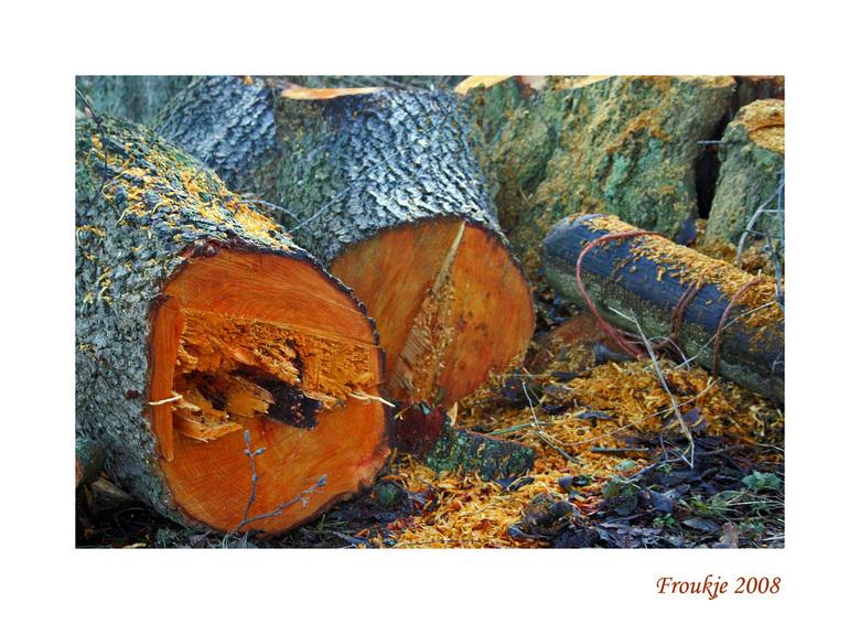 """openhaardhout - Hoorde net op het nieuws dat er een vorstperiode aankomt ,dus ik dacht ik hak er nog eentje om <img  src=""""/images/smileys/smile.png""""/>"""