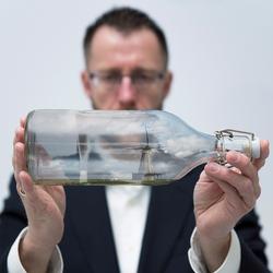 sheep in a bottle
