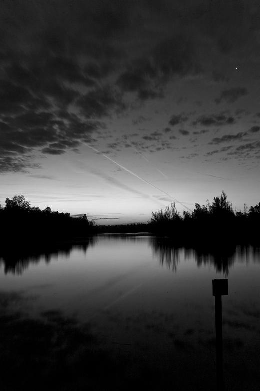 Biesbosch, ochtend monochromie - Een omzetting naar zwart wit, Biesbosch, 's ochtends vroeg bij zonsopkomst (5 uur of zo, in de zomer). Rechtsbov