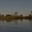 explore papyrus bos in de Delta