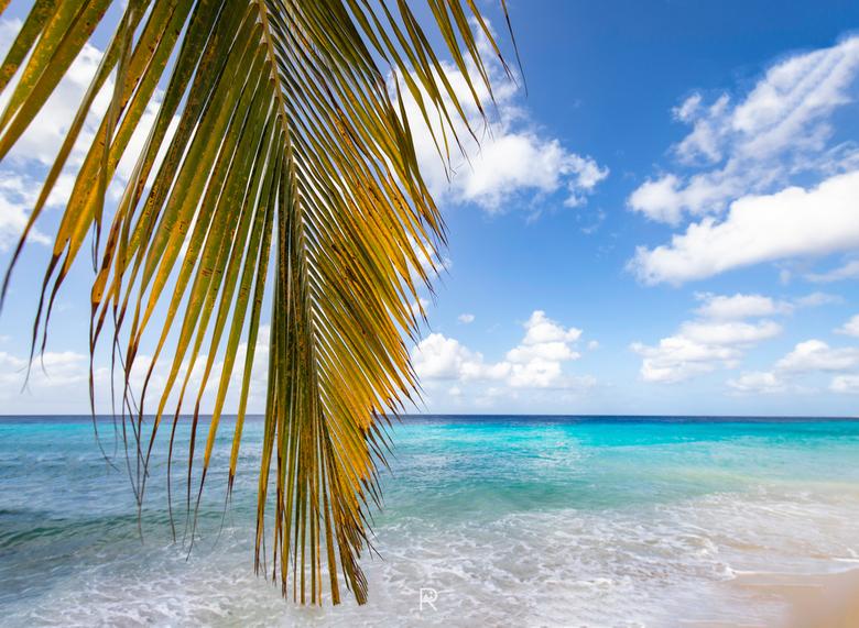 Kokomo Beach, Curacao - Kokomo Beach op Curacao.