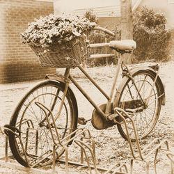 fietsen maar