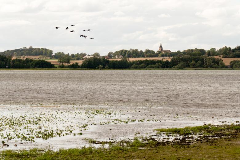 Complete freedom - Fantastisch natuurgebied in Zweden. lang gewacht op dit perfecte shot met de voorbij vliegende vogels.