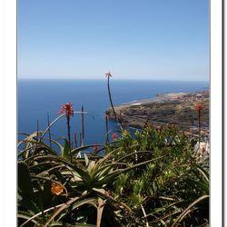 Madeira 2011