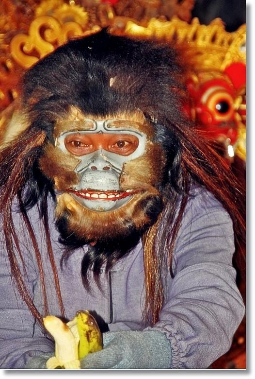 Aap Hanoman - De Aap Hanoman is het vriendje van Barong, deze foto komt uit de traditionele Barongdans die begeleid word  door een gamelan orkest, dez