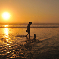 Mijn man, mijn hond en een zwoele zomeravond