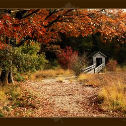 Autumn Flavour '07