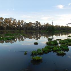 A silent river