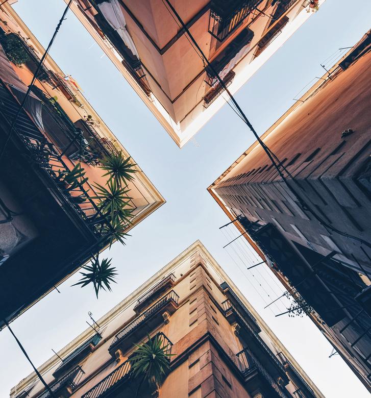 Barcelona lookup -
