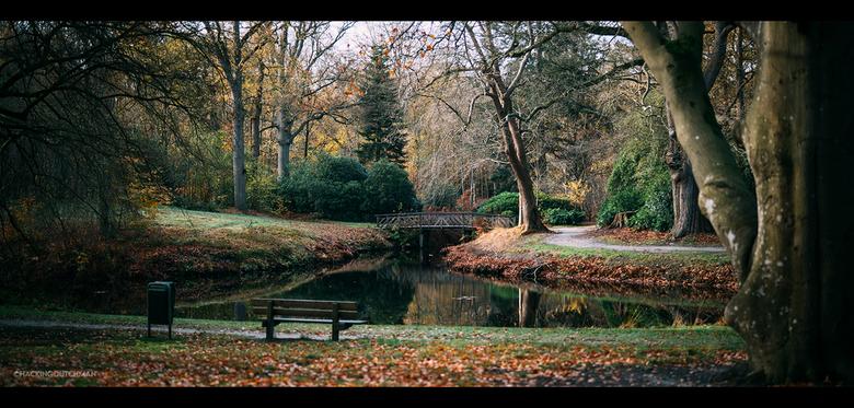 Park - Een park in de herfst. Leuk plaatje met het water en het bruggetje.<br /> <br /> <br /> <br /> ©MotionMan 2020