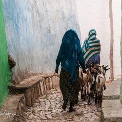 De smalle steegjes van Harar