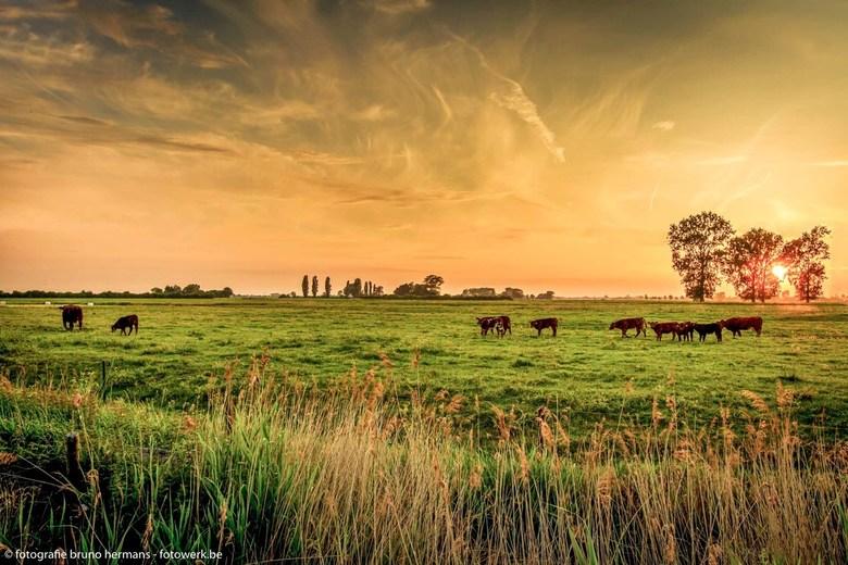 Stuivekenskerke - Zonsondergang in Stuivekenskerke ( W-Vlaanderen)<br /> Dank voor alle reacties