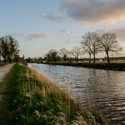 Hertog-willem pad
